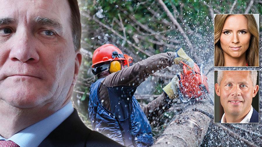 Socialdemokraternas försäkringar om att även de minsann tar strid för det svenska skogsbruket visar sig vara tomma ord när deras europaparlamentariker ställer sig bakom krigsförklaringen i EU mot den svenska skogen, skriver Sara Skyttedal och Kjell-Arne Ottosson.