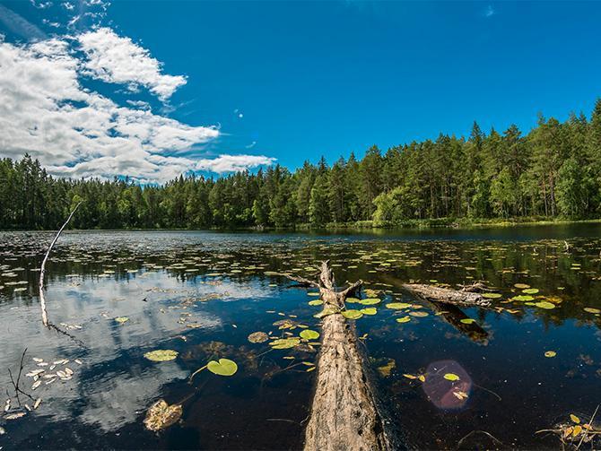 Hitta fina insjöar längs småländska vandringsleder.