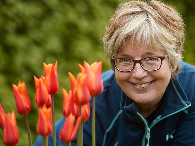 Blommor och träd på väg att ta slut. Ovanligt stor rusch i år, rapporterar Anette Cato på plantskolan vid Svabesholms kungsgård.