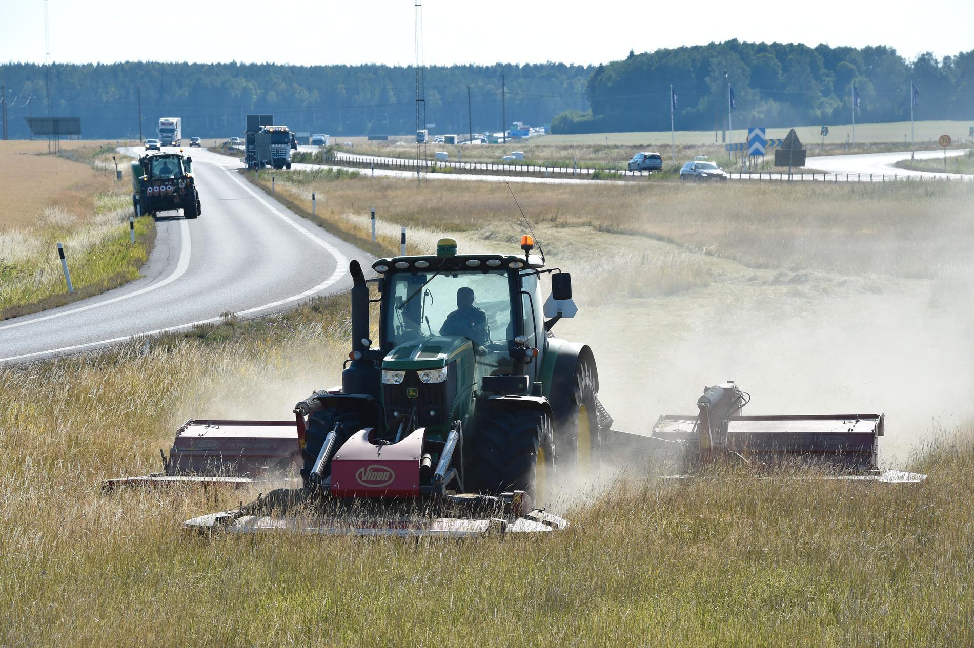 Här slår de gräset mitt på motorvägen.