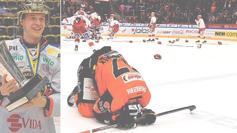 SHL. Hockeyallsvenskan och Hockeyettan har lämnat sina förslag till