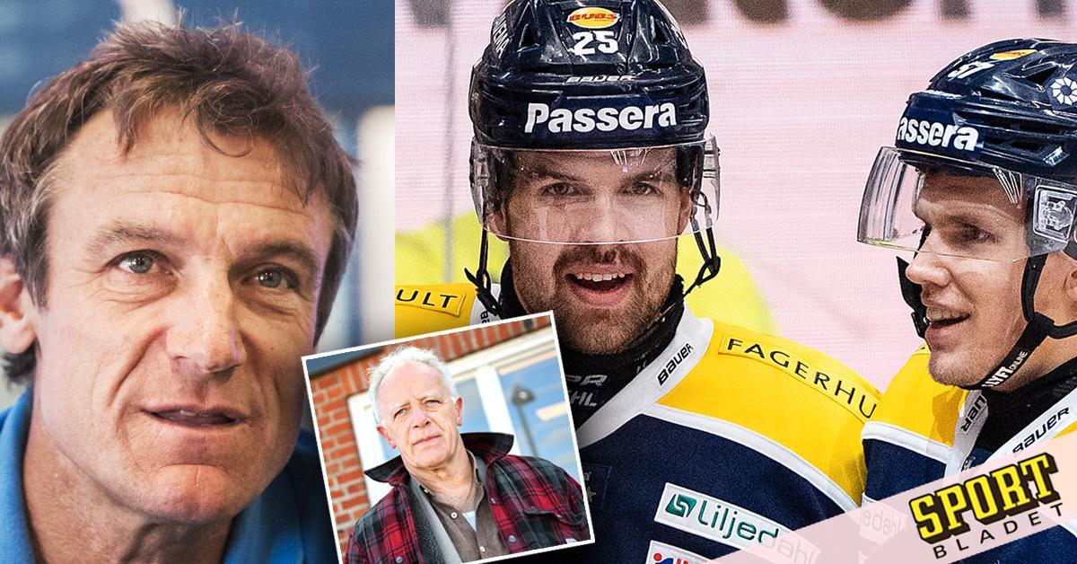 """Mats Wilander om brorsan i HV71: """"Frågade mig om råd"""""""