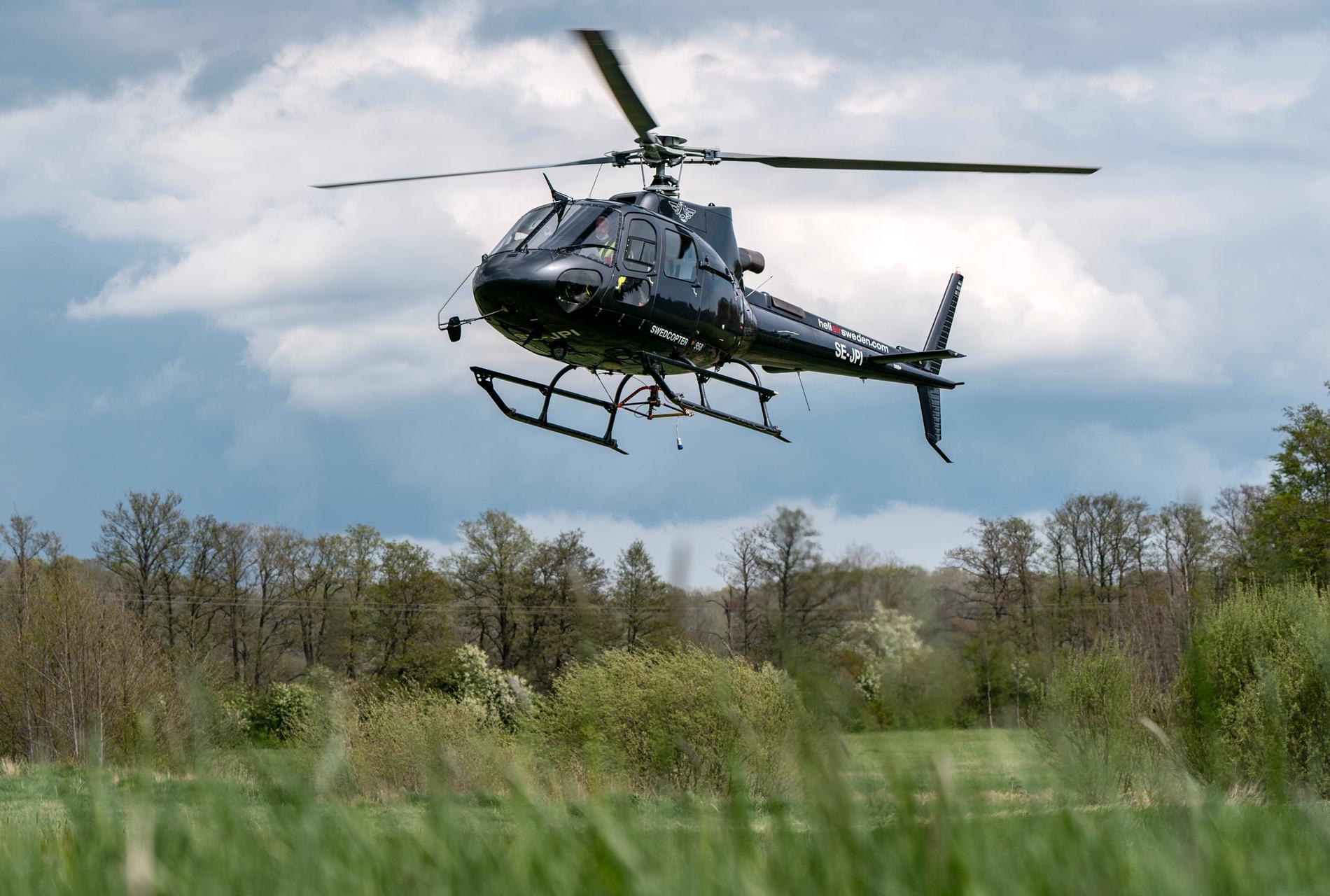 En av MSB:s kontrakterade Airbus Helicopters H125 ( opererad av HeliAir Sweden ) landar efter en övning. Arkivbild.