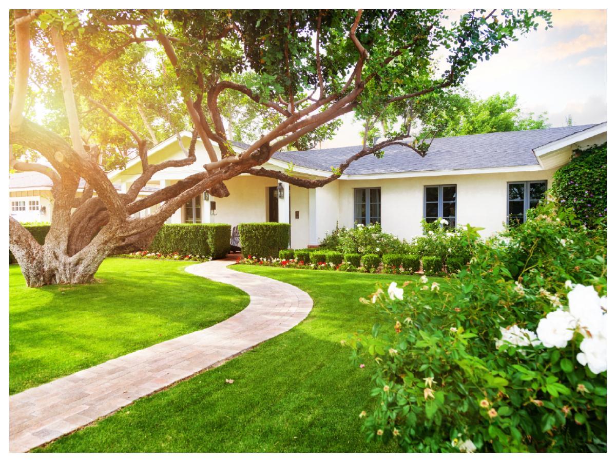 Utgå från husets stil när du planerar hur trädgården ska se ut.