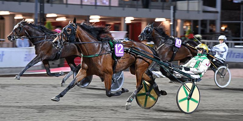 Jeppe Juel skrällde med Down Town Girl i V86–5. En häst som vinnaren hittade på fem streck.