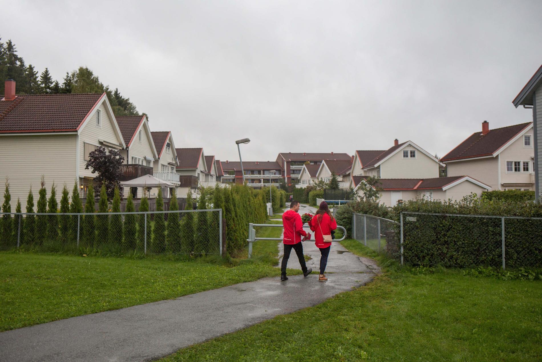 Shwan Ali och Elin L'Estrange delar ut rosor till väljare i norska Kløfta.