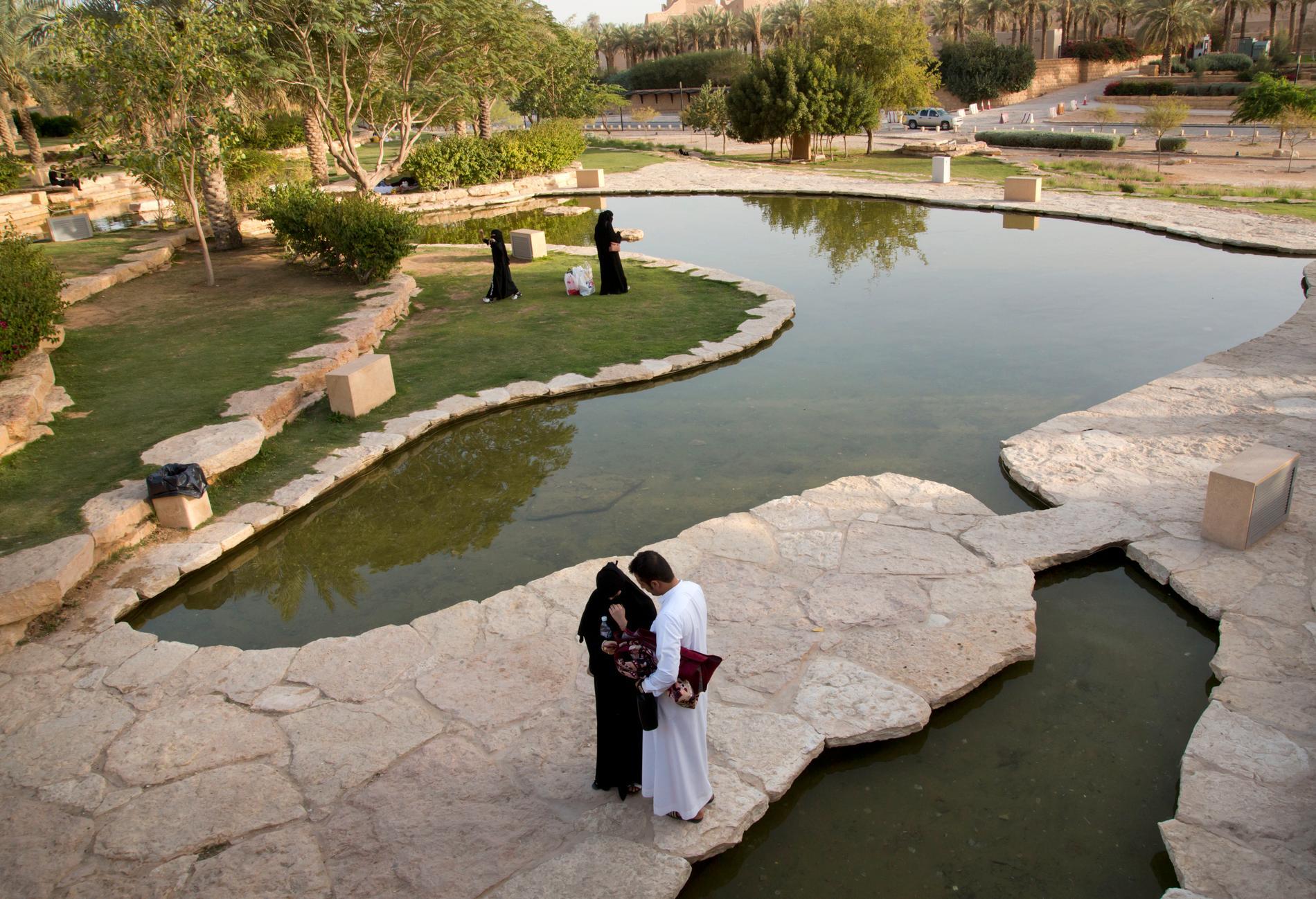 Trädgårdarna i Diriyah utanför Saudiarabiens huvudstad Riyad. Arkivbild.