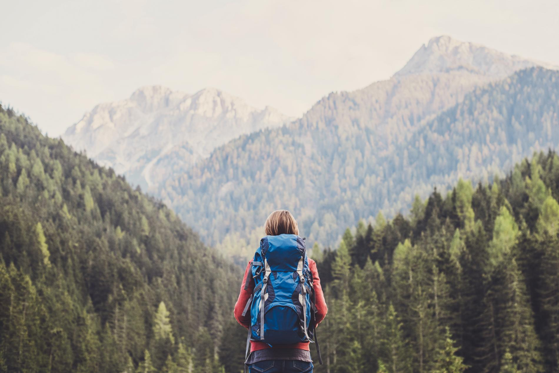 Att vandra är ett perfekt sätt att hitta lugnet.
