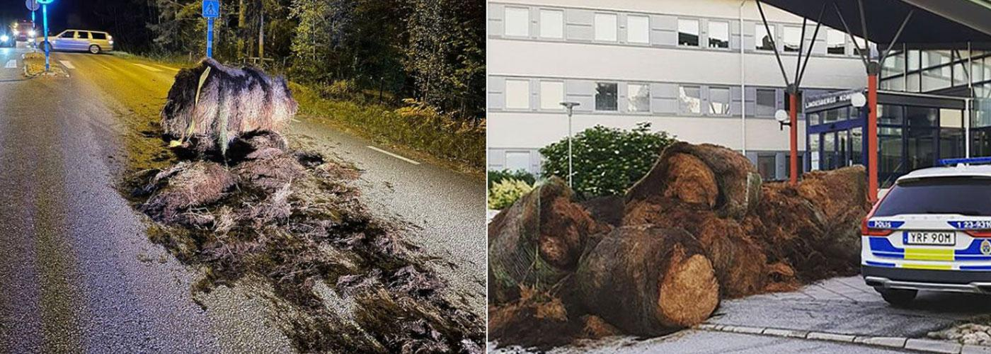 Under natten till söndagen blev Lindesberg med om ännu en hö-attack. Bilden till höger är från en tidigare attack i juni.