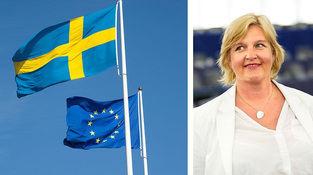 Behovet av samarbete för att möta våra allra största utmaningar är omfattande och akut och behöver mötas med en ökad budget för EU, skriver Karin Karlsbro.
