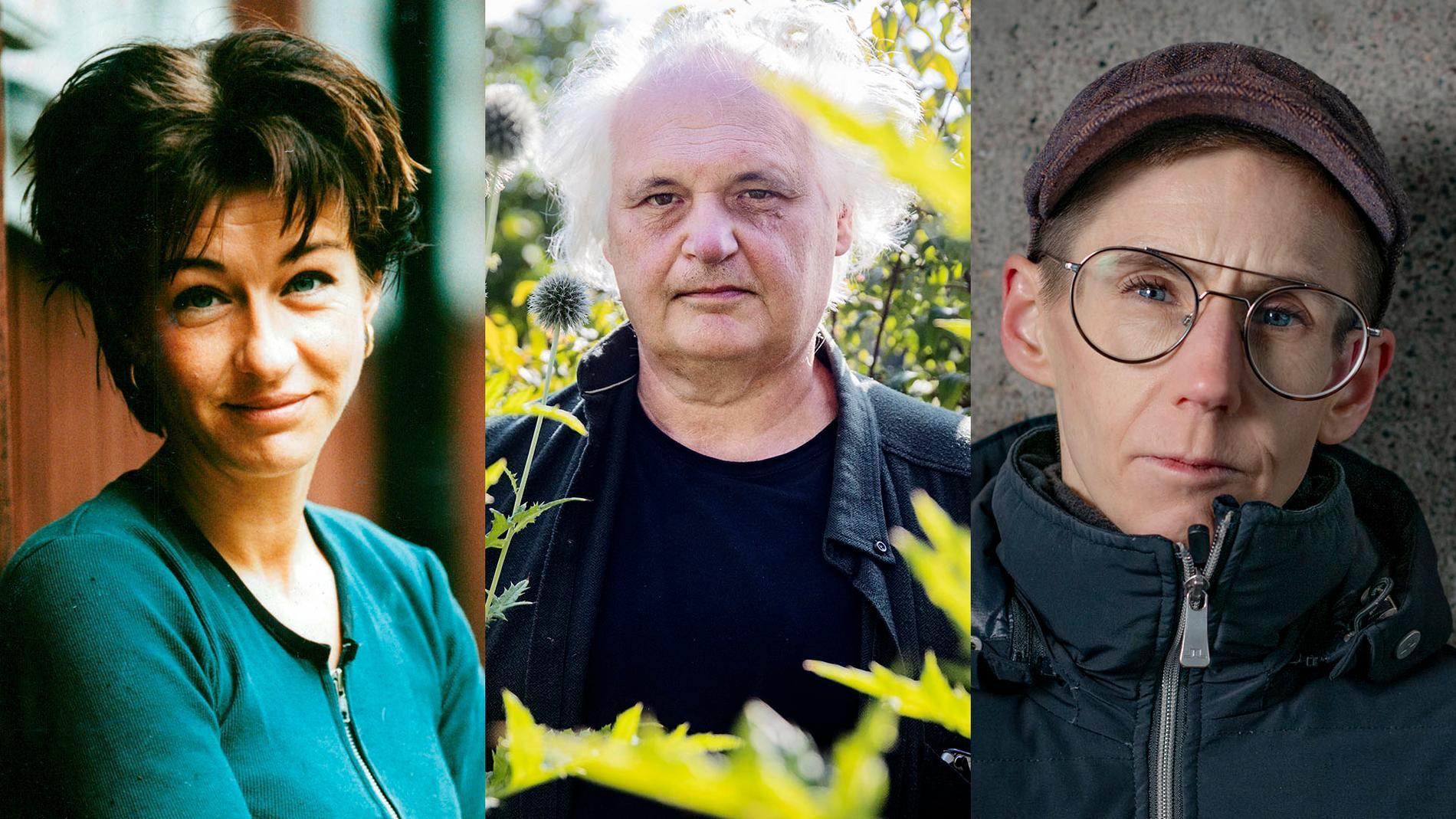 Nina Lekander, Göran Greider och Stina Oscarson tillhör dem som inte ser de vänsterrörelser som på riktigt vill ha ett annat ekonomiskt system, skriver Elina Pahnke.