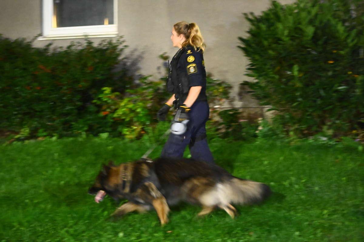 Polisen söker efter gärningspersonerna.