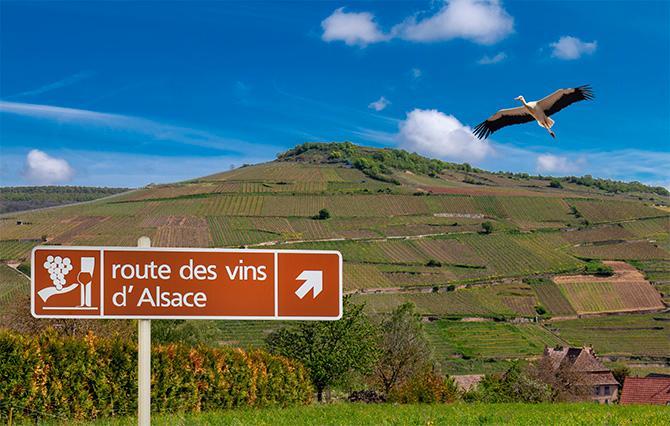 Alsace ligger i nordöstra Frankrike.