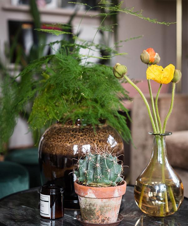 Med hjälp av kontraster i form av olika höjder, bladverk och färger skapar Emelie vackra stilleben.