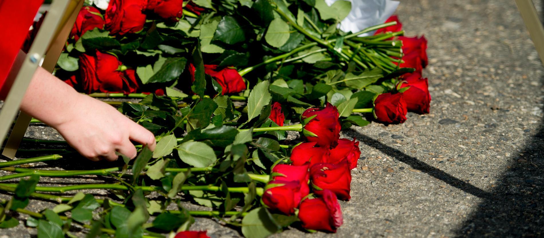Rosor under en minnesstund för offren på Utøya.