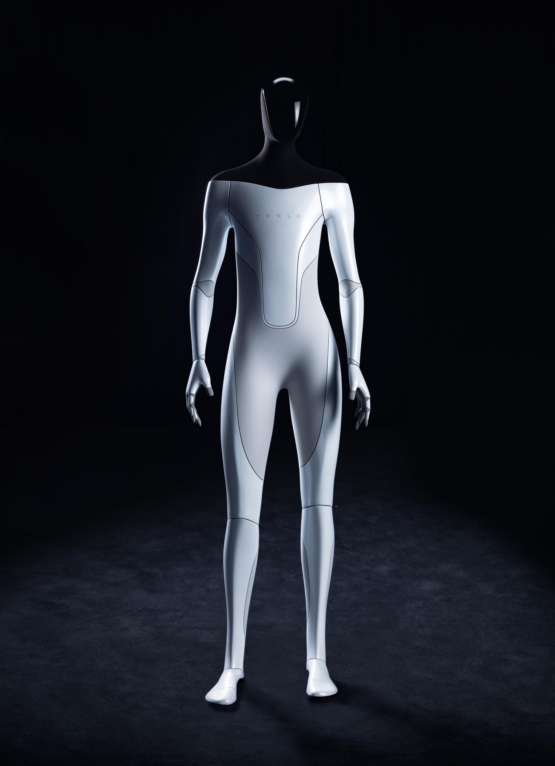 Tesla Bot på en bild från företagets hemsida.