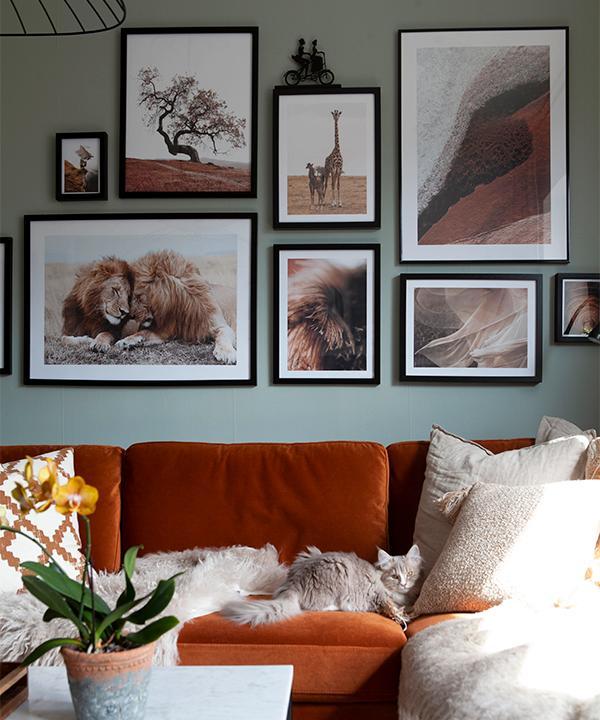 Katten Daisy gosar i soffan från Ellos. Tavlor från Desenio och kuddar från H&M home. Soffbord från Furniture box.