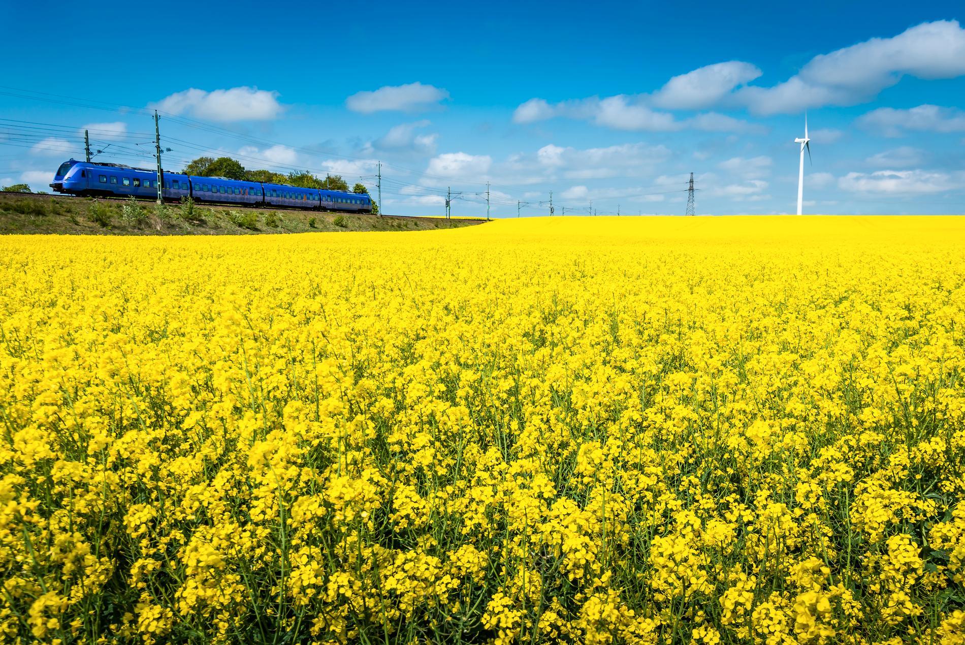 Att tågluffa i södra Sverige kan vara magnifikt.