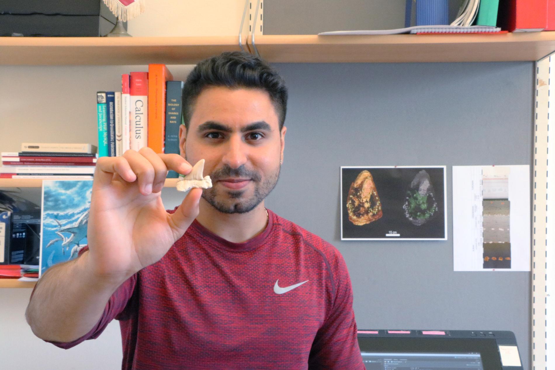 Mohamad Bazzi är doktorand vid Uppsala universitet och har forskat på hur hajsläktet påverkats av massutdöendet för 66 miljoner år sedan. Pressbild.