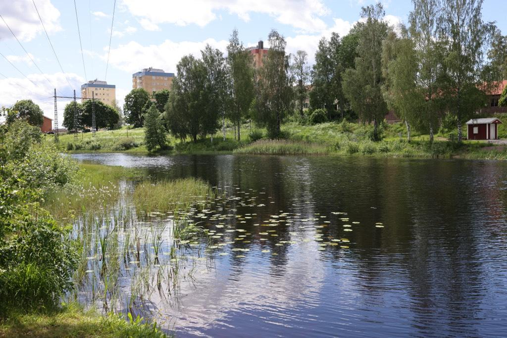 En femårig pojke som försvann från ett HVB-hem i Hagfors hittades död i en å. Hemmet stängdes sedan av Inspektionen för vård och omsorg – som nu JO-anmälts för det snabba beslutet. Arkivbild.