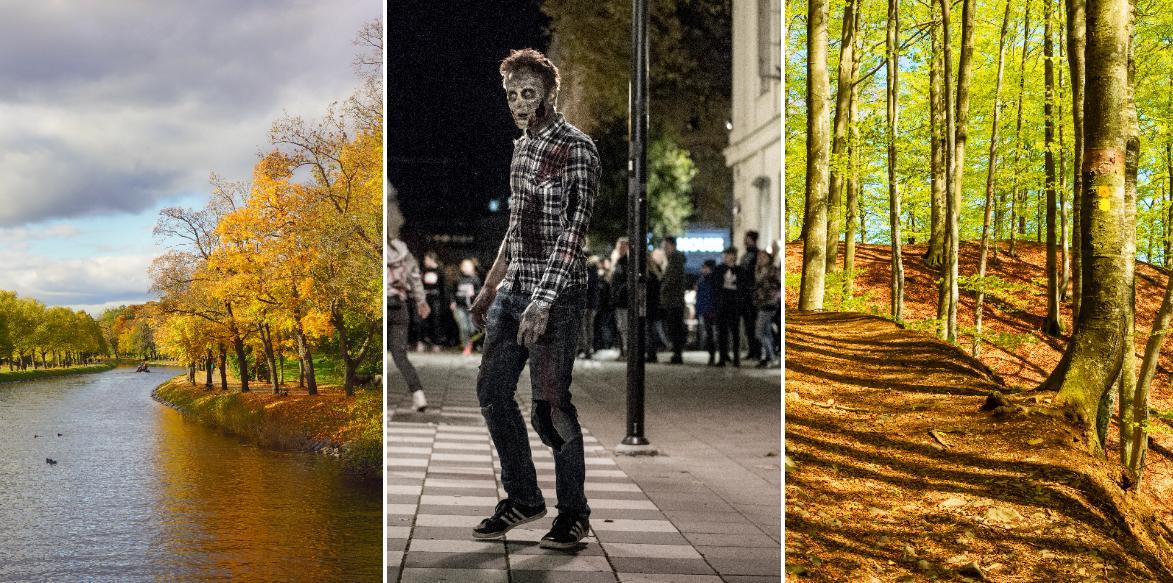 Hösten kan vara både läskig och lugn.