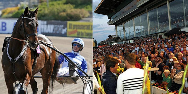 De tio hästarna är nu presenterade inför Jägersros stora sprinterlopp, Hugo Åbergs Memorial.