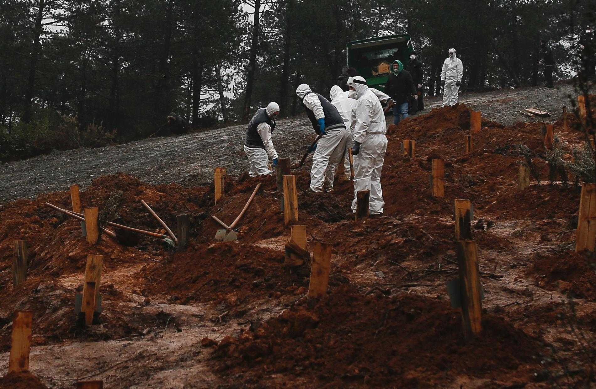 Gravar grävs på en nyinstiftad begravningsplats som myndigheterna ordnat särskilt för coronasmittade,i Istanbul.