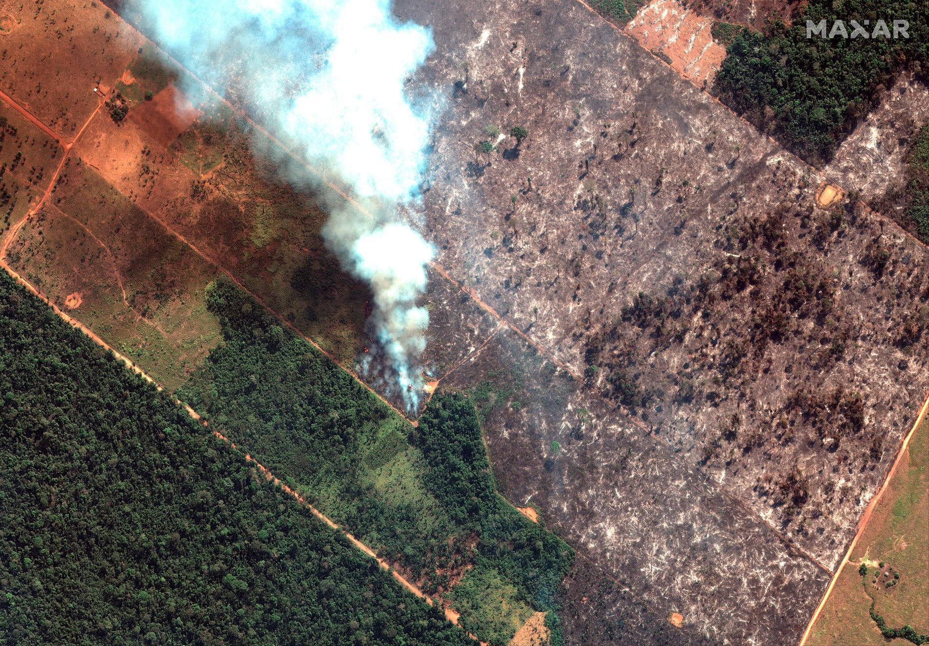 Satellitbild som visar en brand i den brasilianska delstaten Rondonia. Hur svenska AP-fonder påverkar miljön i Amazonas ska nu undersökas. Arkivbild.