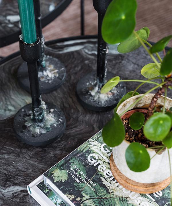 """""""Man kan aldrig bli fullärd när det kommer till fakta om växter"""", säger Emelie som älskar att läsa böcker om ämnet. På bordet står en elefantöra."""