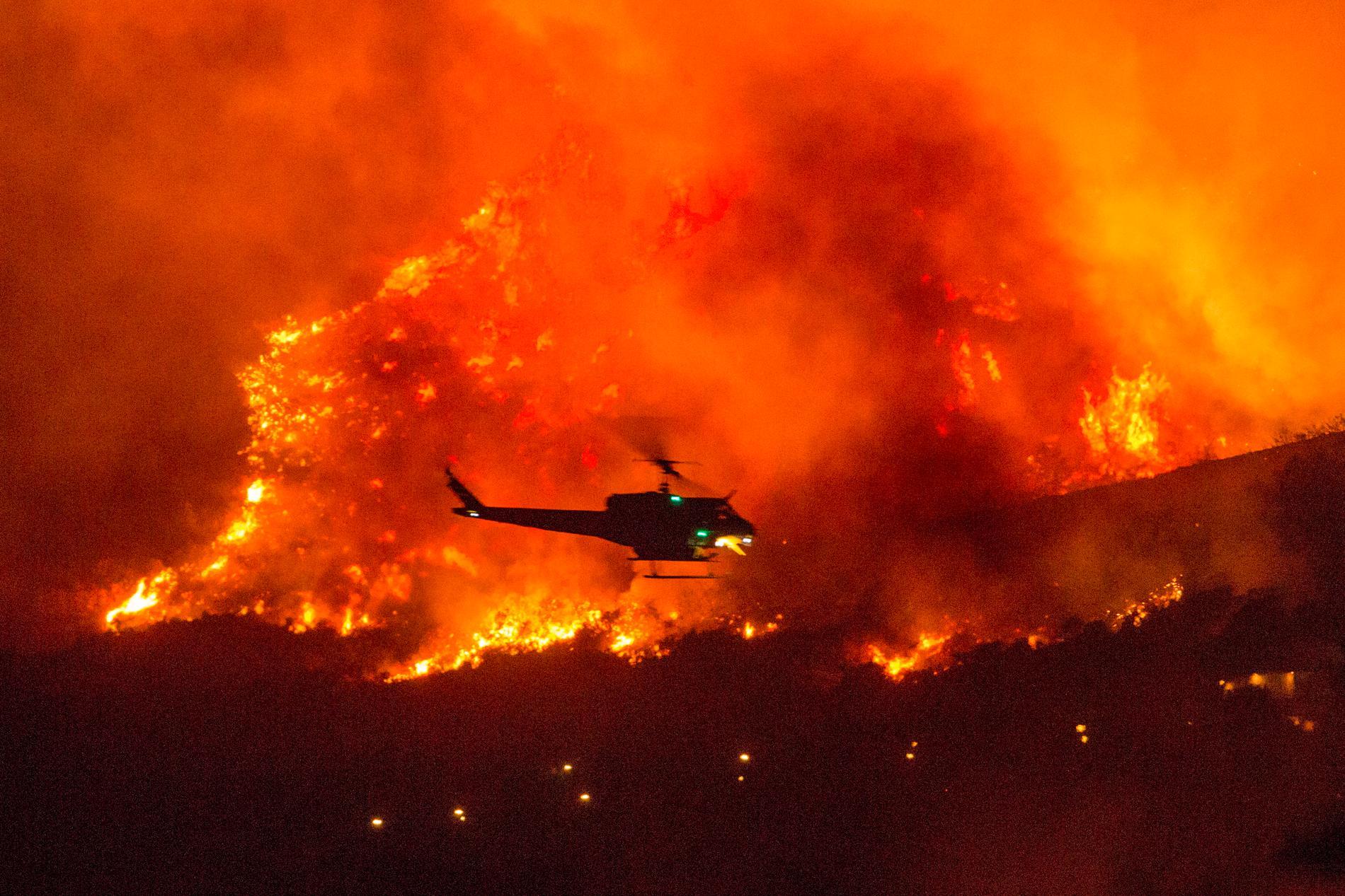 Helikopter under släckningsarbetet i Kalifornien.