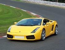 Vrålåket Lamborghini Gallardo.
