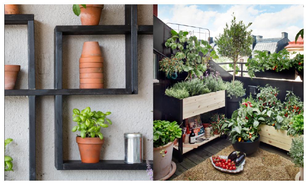 Smarta odlingshyllor från Hasselfors garden som utnyttjar väggen optimalt. Med odlingslådor förvandlar du stadsbalkongen till en prunkande oas. De här lådorna kommer från Plantagen.