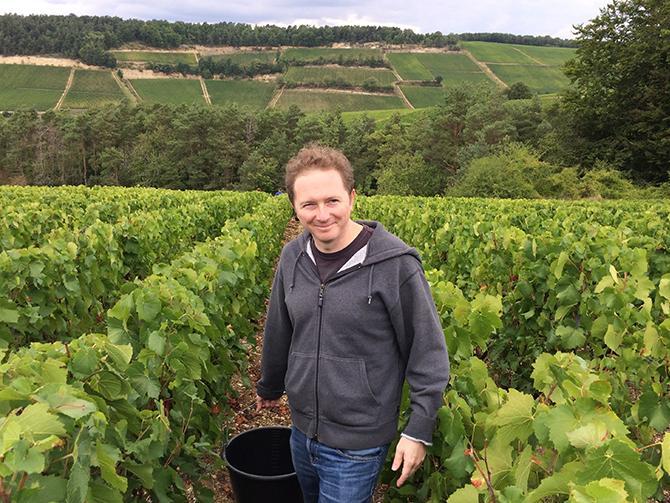 """Christian Holthausen i franska champagne upplever ett oförutsägbart klimat. """"Det haglar mer, plötsligt blir det onormalt varmt – eller så regnar det vid oväntade tider på året""""."""