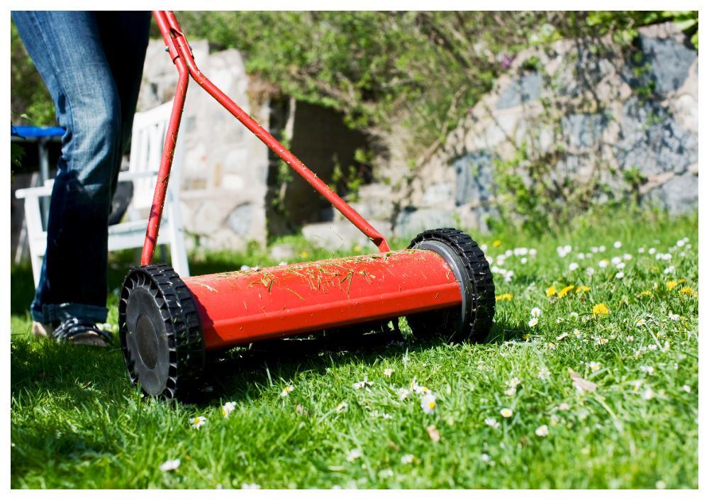 Klipp inte gräset för kort.