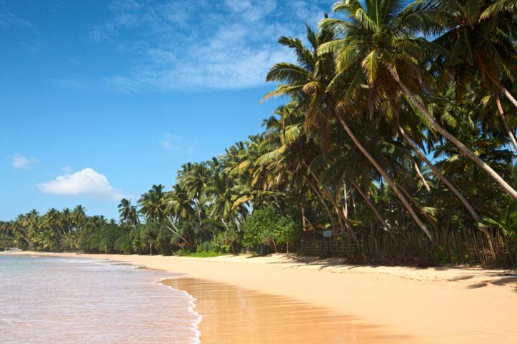 Sugen på sol och bad? Kolla efter nya prisvärda destinationer 2012 – Sri Lanka är ett exempel. Inte lika populärt som Thailand – men minst lika vackert.