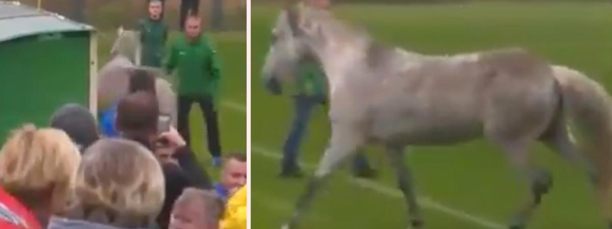Kvalmatchen till Deaflympics mellan Ukraina och Italien fick avbrytas efter att en häst trampat in på planen.