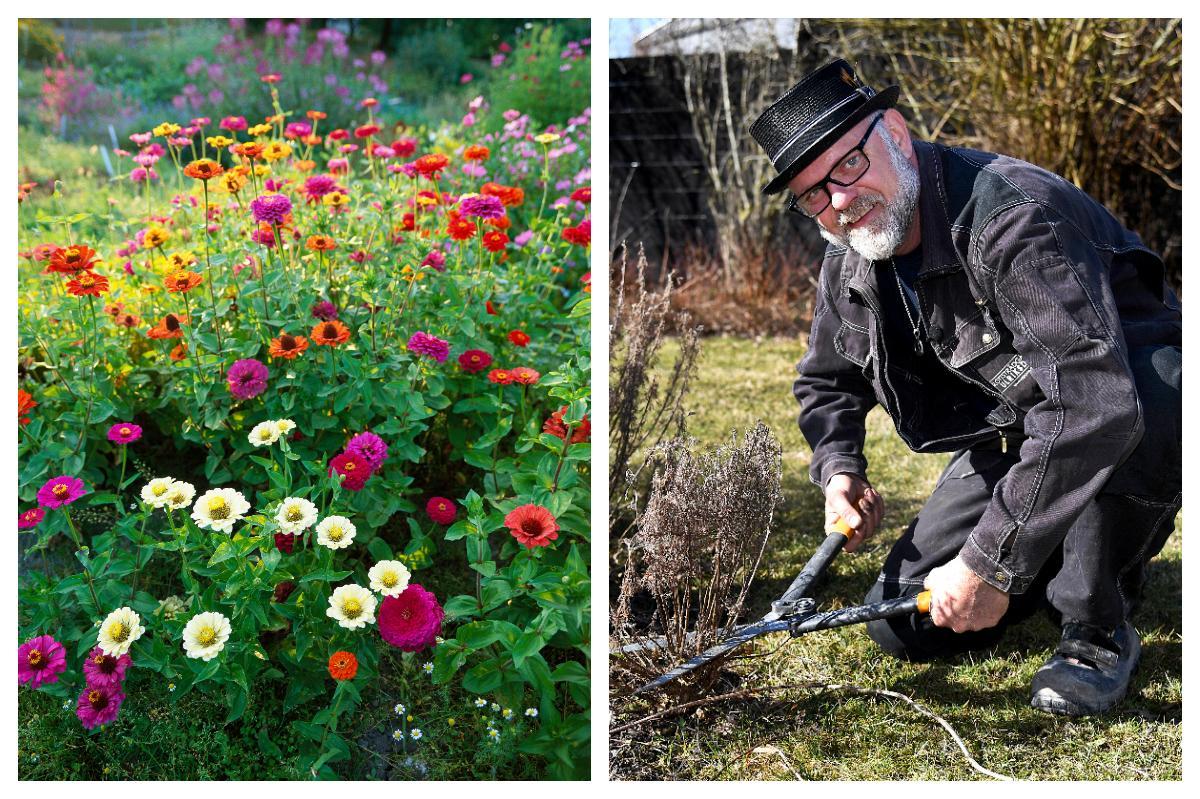 Prunkande rabatter kräver bra jord. Bosse Rappne tipsar om hur du jordförbättrar.