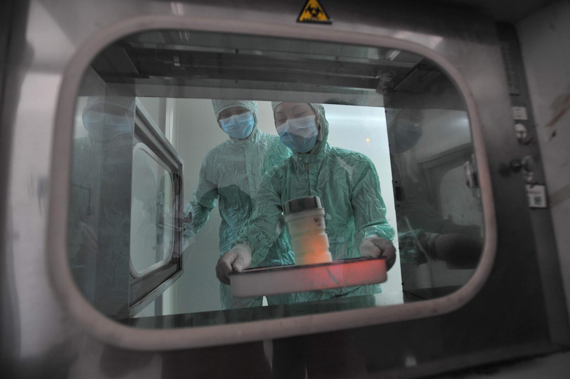 Coronaviruset undersöks i ett laboratorium i Wuhan.