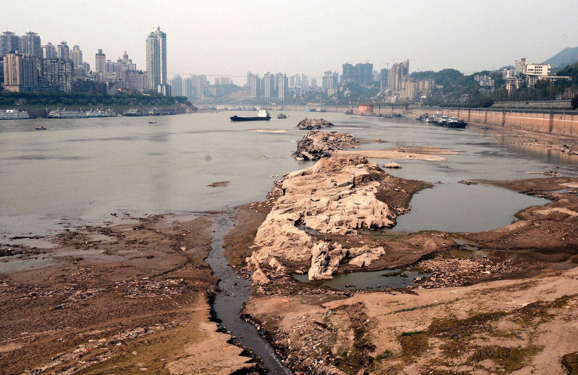 Yangtzefloden vid Qhongqing under en period av torka 2011.