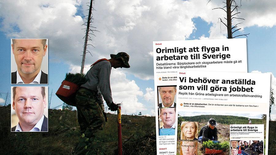 Att plantera och skörda inom jord- och skogsbruk är arbetsuppgifter som bolagen löst med inhemsk personal sedan flera generationer tillbaka. Nu vill företagen ha arbetskraft som är beredd att jobba för ännu lägre löner. Slutreplik från Per-Olof Sjöö och Tobias Baudin.