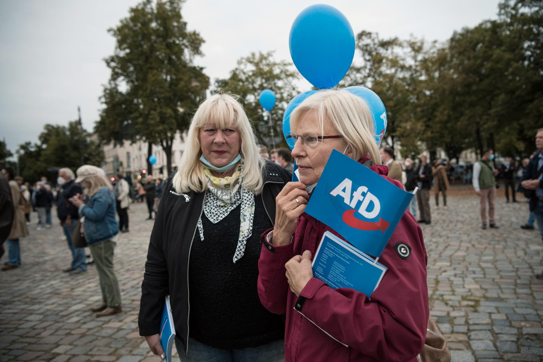 """""""Folk måste vakna och inse vad som håller på att hända i Tyskland"""", säger Martina Berning, 70 som tänker rösta på AfD."""