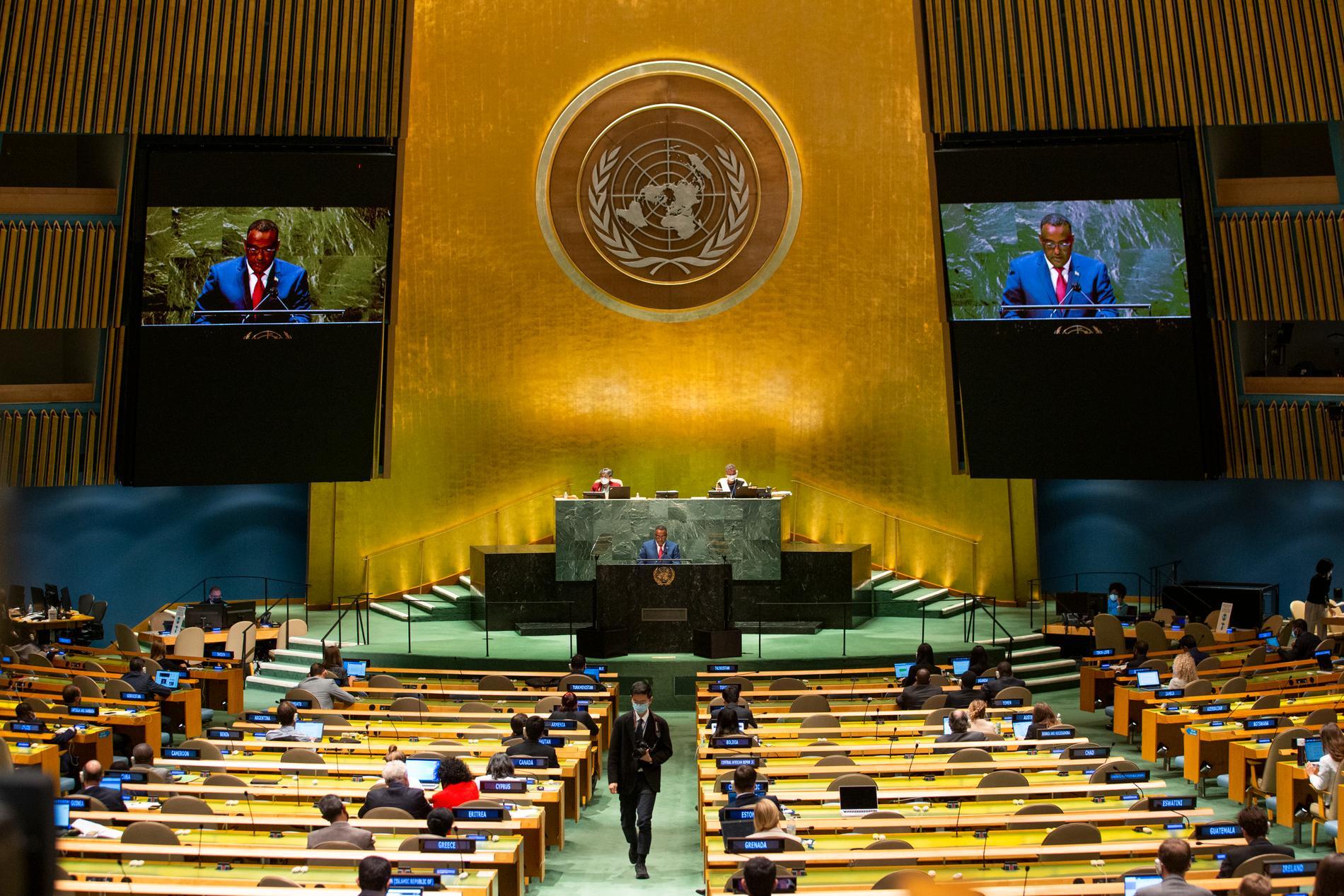 FN:s generalförsamling.