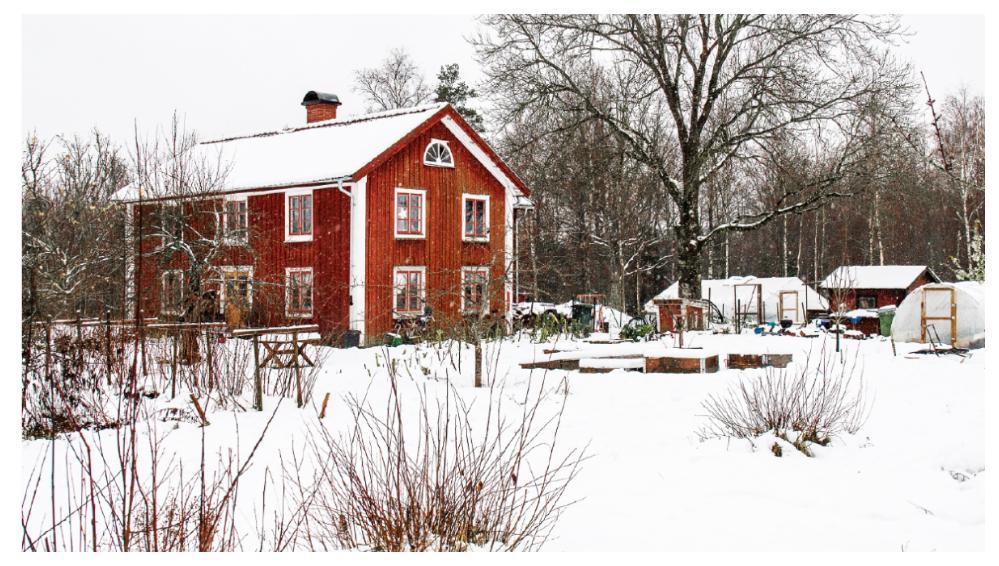 Det syns inte utifrån, men under snön i Sara Bäckmos trädgård växer massor av goda grönsaker året om.