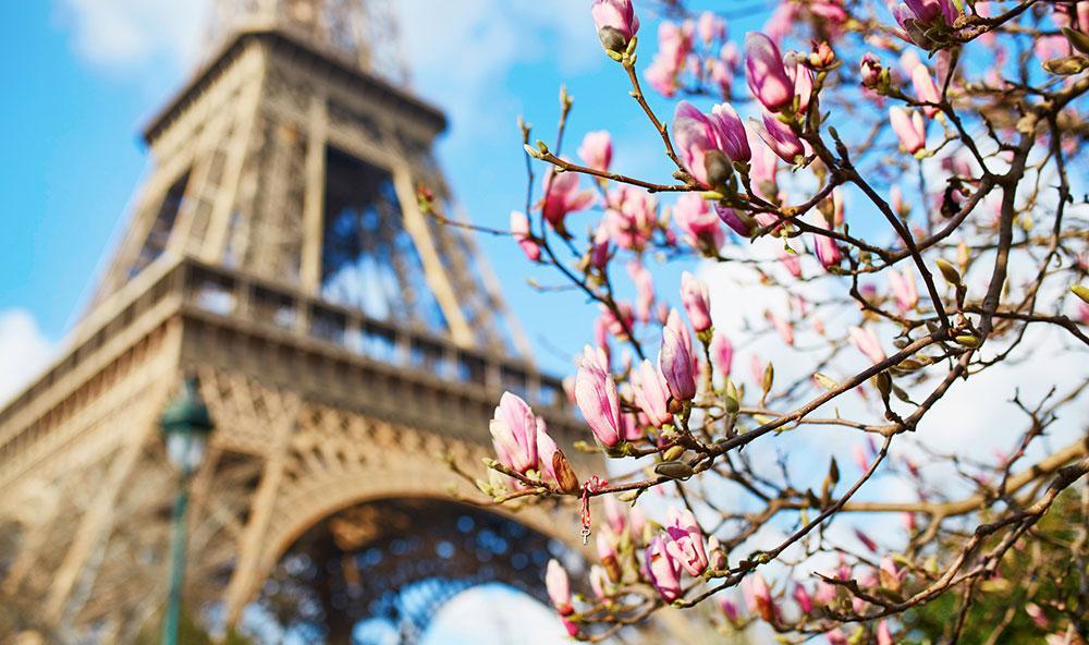 Besök någon av Paris alla härliga chokladbutiker i påsk. Eller ta en promenad till Eiffeltornet och njut av blommor och grönområden.