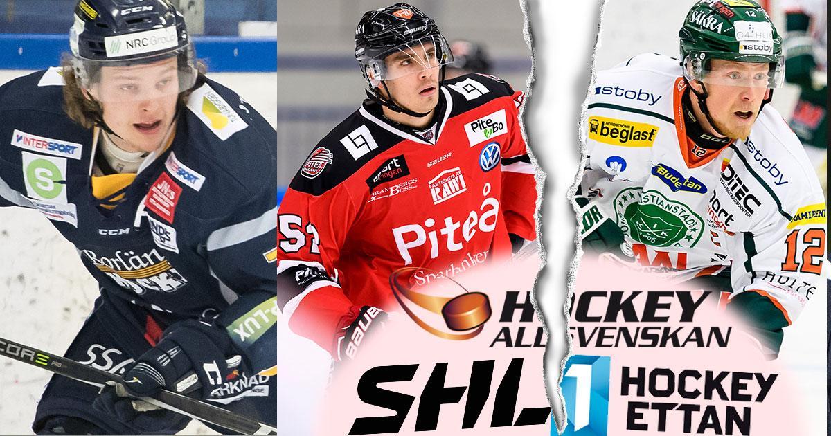 Isak Pantzare (Borlänge), August Tornberg (Piteå) och Johan Skinnars (Kristianstad) är några hockeyettan-spelare som