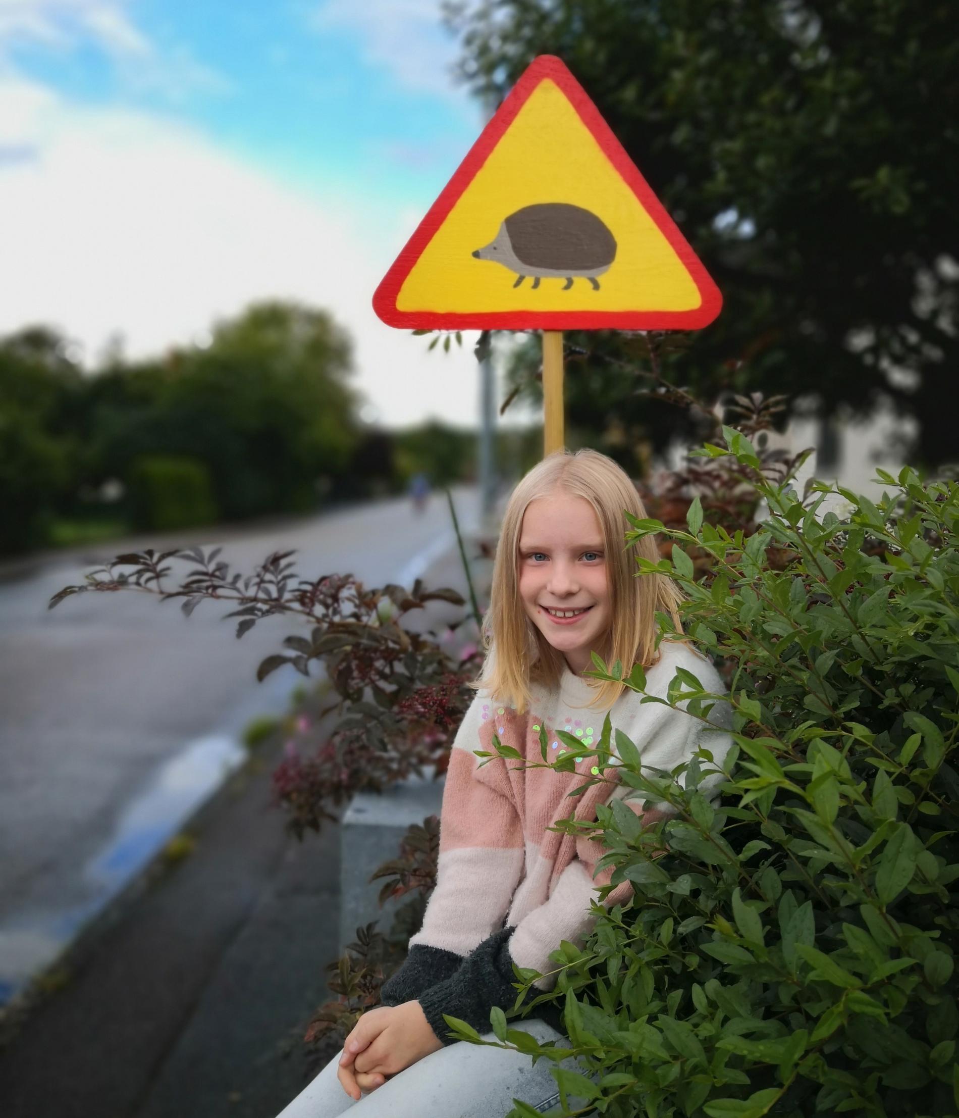 Nu kan igelkottarna i området på ett säkrare sätt ta sig över gatan.