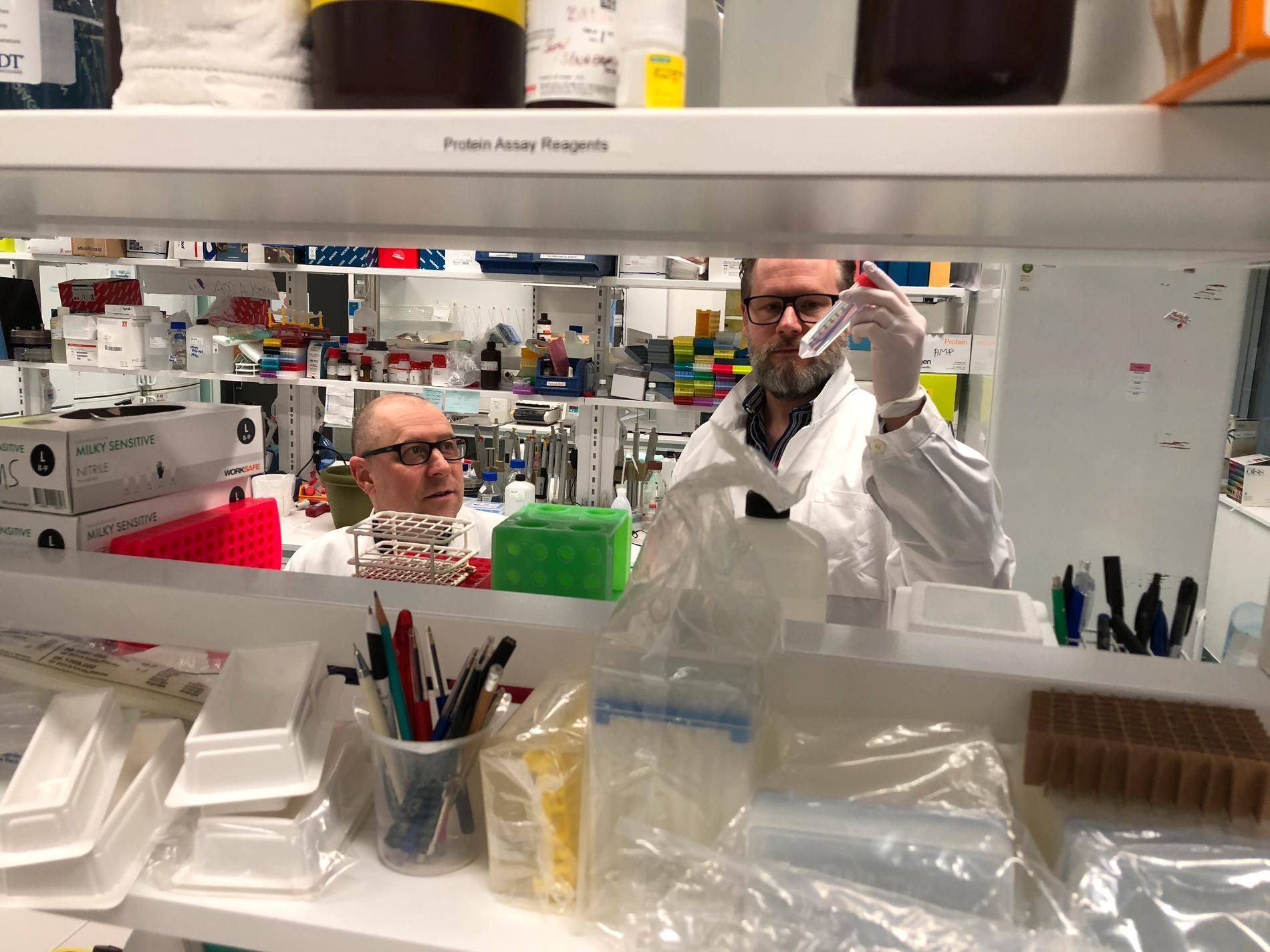 Doktor Gustaf Ahlen (t v) och docent Lars Frelin arbetar med vaccinet.