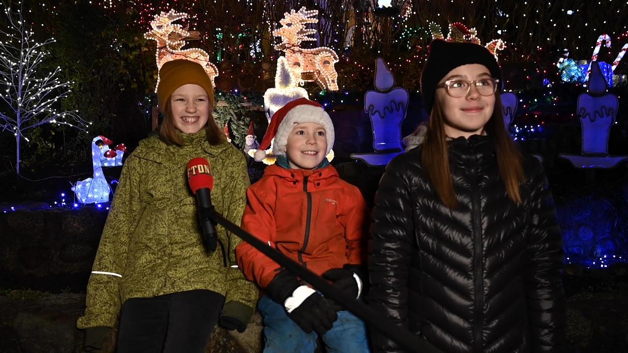 Aggie, 11, Gösta, 9 och Julia, 12 tittade på juldekorationerna.