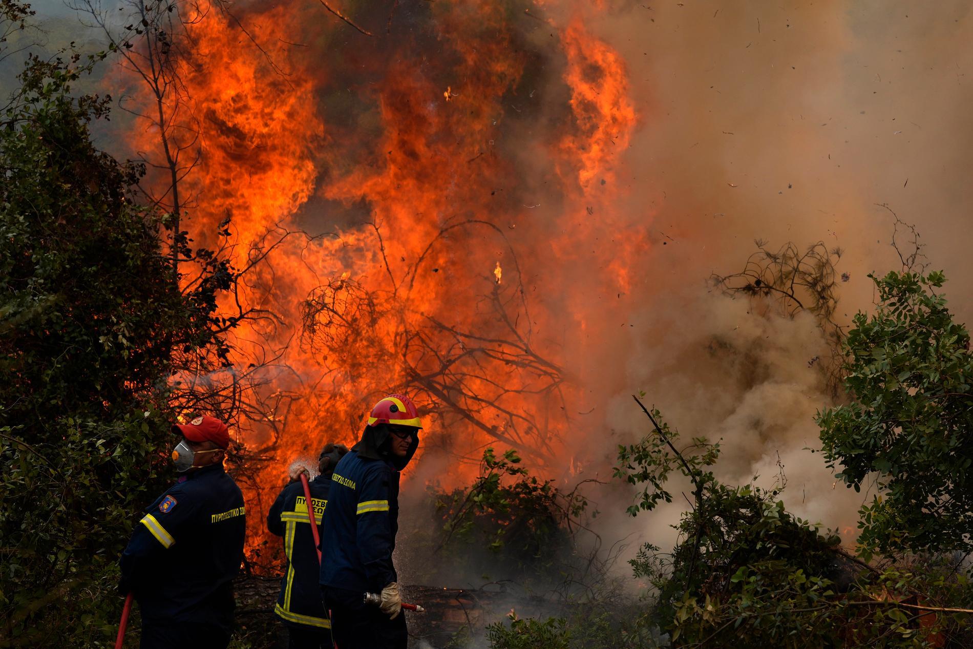 Skogsbrand norr om Aten.
