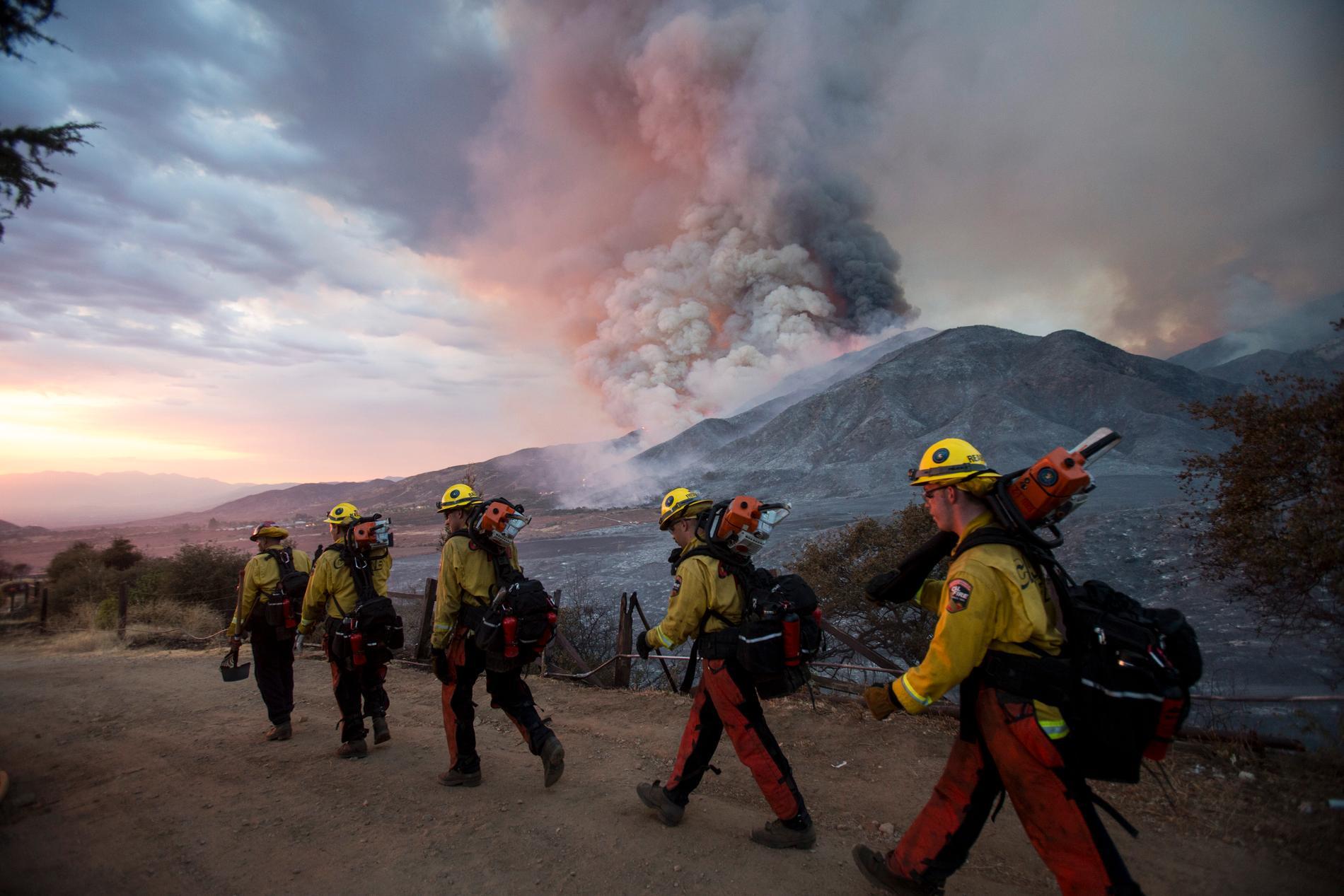 Det är just nu flera stora bränder i Kalifornien, varav en har gjort att campare blivit fast i en nationalpark.
